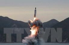 Nhật Bản diễn tập sơ tán với giả định Triều Tiên phóng tên lửa