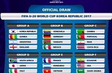 Công bố giá vé xem đội tuyển Việt Nam tại U20 World Cup 2017