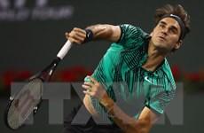Không đổ một giọt mồ hôi nào, Foger Federer vẫn vào bán kết