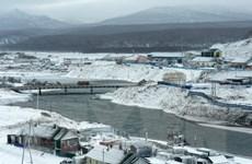 Nhật Bản-Nga đàm phán về hoạt động chung trên quần đảo tranh chấp
