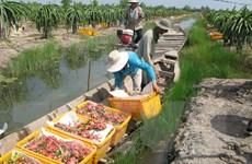 Ấn Độ tạm dừng nhập khẩu một số mặt hàng của Việt Nam