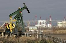 Các nhà sản xuất dầu mỏ sẽ xem xét thỏa thuận về sản lượng vào tháng 4