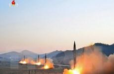 Mỹ đang đánh giá các biện pháp quân sự đối với Triều Tiên