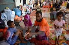 Myanmar phản đối Liên hợp quốc điều tra nạn thanh lọc sắc tộc