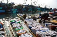 Indonesia muốn coi đánh bắt cá trái phép là phạm tội xuyên quốc gia