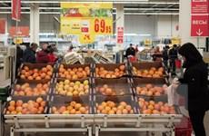Thổ Nhĩ Kỳ bác bỏ thông tin hạn chế nhập khẩu nông sản Nga
