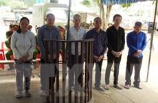 Xét xử băng nhóm trộm chó chuyên nghiệp hoành hành tại Tây Ninh