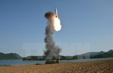 Nga-Trung nhất trí kế hoạch giảm căng thẳng trên bán đảo Triều Tiên