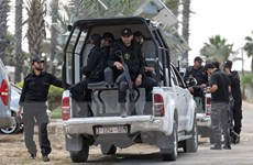EU gia hạn sứ mệnh cảnh sát và hỗ trợ biên giới tại Palestine