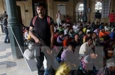 Pakistan trả tự do cho 78 ngư dân Ấn Độ xâm nhập trái phép