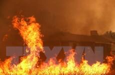 Mỹ khống chế được vụ cháy rừng tồi tệ kéo dài gần 1 tuần qua