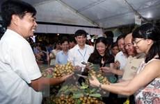 Hưng Yên lần đầu tiên tổ chức lễ hội tôn vinh nhãn lồng