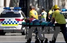 26 công dân Pháp bị thương trong vụ tấn công tại Barcelona