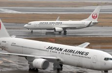 Máy bay của hãng Japan Airlines hạ cánh khẩn cấp vì va phải chim