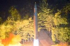 """Đức ủng hộ đàm phán hạt nhân Triều Tiên """"theo kiểu Iran"""""""