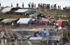 Các trại tị nạn của người Hồi giáo Rohingya trước bờ vực thảm họa