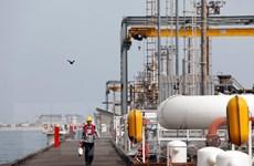Ba quốc gia vùng Vịnh đồng loạt tăng giá xăng dầu đầu tháng 10
