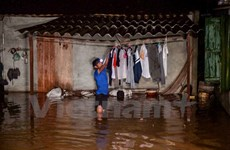 Cuộc sống ngày mưa lũ trên vùng rốn nước của Thủ đô Hà Nội