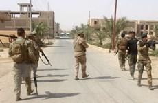 """Ngoại trưởng Mỹ yêu cầu lực lượng """"dân quân"""" Iran rút khỏi Iraq"""