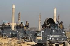 Iraq tìm kiếm sự hợp tác chống khủng bố với Saudi Arabia, Ai Cập
