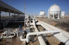 Chính quyền người Kurd đề nghị đối thoại với chính phủ trung ương