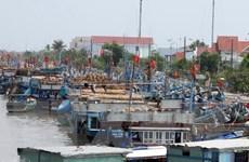 Yêu cầu ứng phó khẩn cấp với áp thấp nhiệt đới và mưa lũ