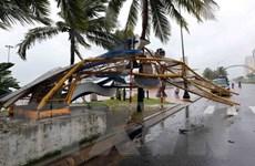 [Photo] Đà Nẵng, Quy Nhơn ngổn ngang trong bão số 12