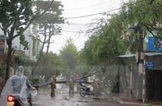 Theo dõi chặt chẽ diễn biến của bão số 12 và tình hình mưa lũ