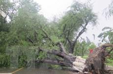 Lũ khẩn cấp trên các sông từ Quảng Ngãi đến Khánh Hòa