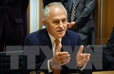 Các chính đảng ở Australia chưa đạt thỏa thuận vấn đề quốc tịch