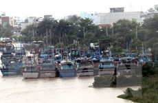 Các tỉnh, thành phố ven biển chủ động ứng phó với bão số 13