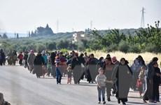 Đức: Đảng cực hữu AfD đề xuất hồi hương người tị nạn Syria