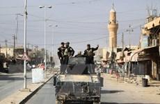 Tổ chức IS đã mất 95% lãnh thổ kiểm soát tại Iraq và Syria