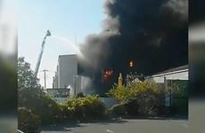 Nổ nhà máy hóa chất ở Nhật Bản làm nhiều người bị thương