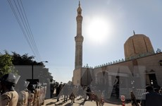 Bộ lạc Ai Cập cam kết hỗ trợ lực chống khủng bố ở Bắc Sinai