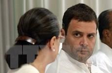 Đảng Quốc đại Ấn Độ bầu ông Rahul Gandhi làm Chủ tịch mới