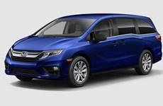 Honda Việt Nam triệu hồi xe Accord và Odyssey để khắc phục lỗi