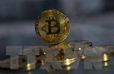 Mỹ tạm ngừng giao dịch cổ phiếu của một công ty đầu tư Bitcoin