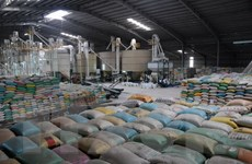 Sửa đổi tạo điều kiện thuận lợi cho doanh nghiệp xuất khẩu gạo