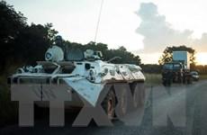 CH Trung Phi: Các nhóm vũ trang đối địch ký thỏa thuận ngừng bắn