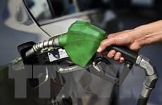Venezuela ấn định mức trần lượng xăng bán cho ôtô và xe máy