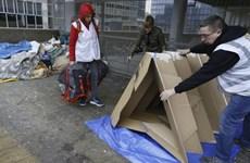 Lều giấy origami - giải pháp cho người vô gia cư ở Brussels