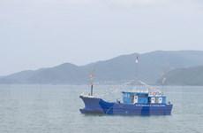 Phú Yên: Khẩn trương tìm kiếm ngư dân bị rơi xuống biển mất tích