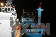 Khẩn trương đưa 2 thủy thủ nước ngoài bị nạn trên biển đi cấp cứu