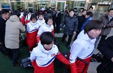 Olympic PyongChang: Đội khúc côn cầu Triều Tiên đã tới Hàn Quốc