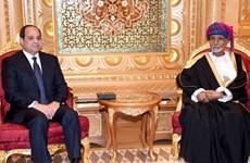 Ai Cập và Oman xem xét vấn đề an ninh tại khu vực vùng Vịnh
