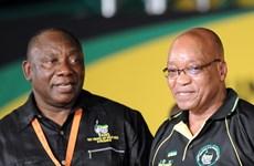 Nam Phi: Phó Tổng thống và Tổng thống thảo luận về từ chức