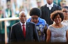 Nam Phi: Đảng cầm quyền xác nhận yêu cầu Tổng thống Zuma từ chức