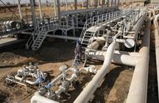 Iraq nhất trí nối lại xuất khẩu dầu ở Kirkuk thông qua Thổ Nhĩ Kỳ