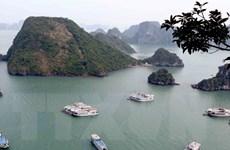 Tạm đình chỉ 3 tàu du lịch vi phạm các quy định trên vịnh Hạ Long